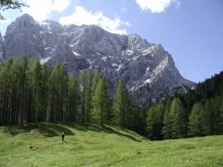 Klimat i temperatura w Słowenii