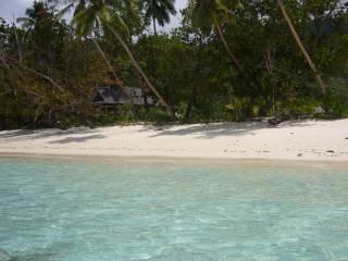 Wyspa Silhouette