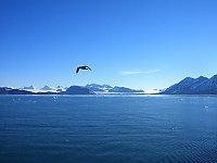 Wyspa Spitsbergen